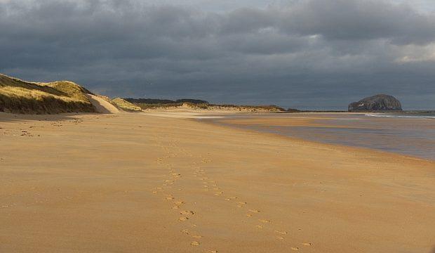 Tyninghame Beach photo